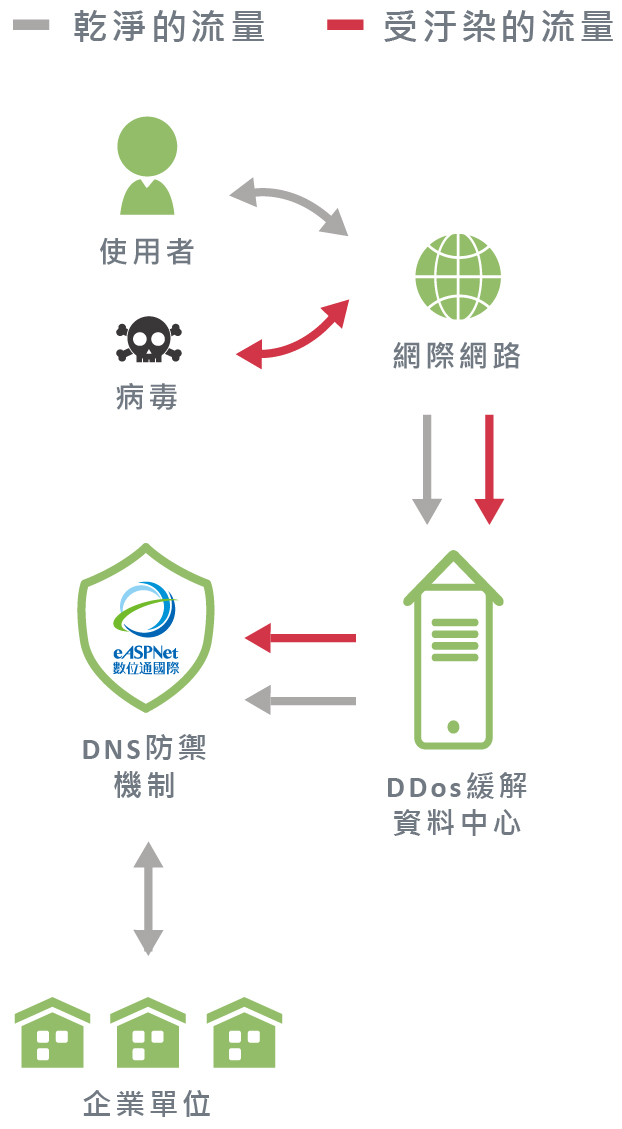 DNS DDoS 資安防護
